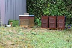 Bienenstand-1