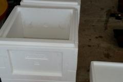 Mini-Plus-streichen-2-e1533456079962